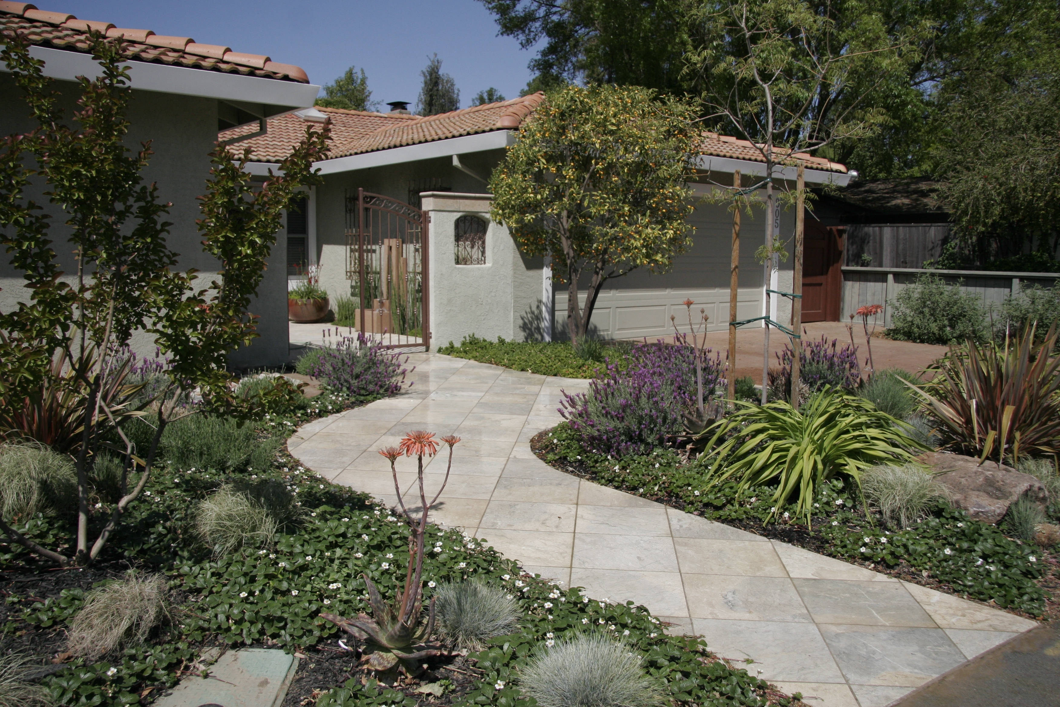 Image of: Landscape Ideas Gallery Of Affordable Drought Landscaping