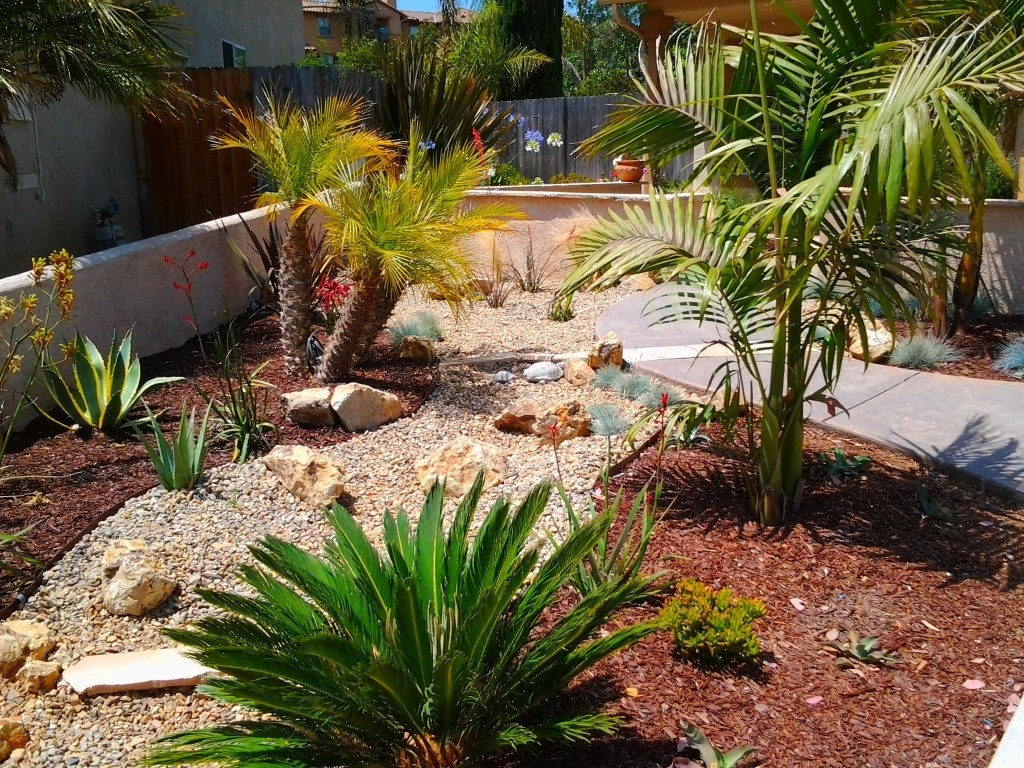 Image of: Drought Tolerant Landscape Ideas Pertaining To Drought Tolerant Landscape Ideas Popular Drought Tolerant Landscape Ideas