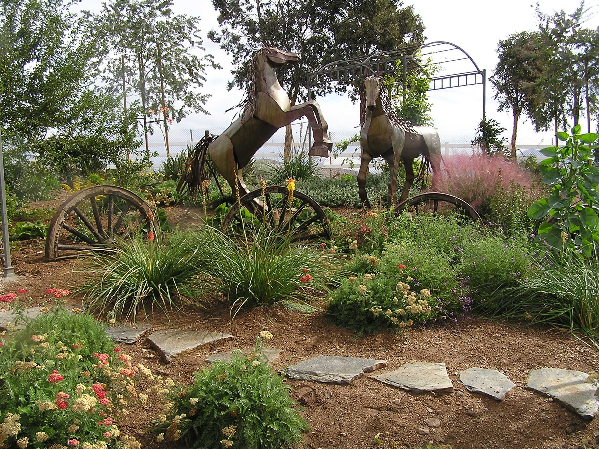 Image of: Drought Tolerant Landscaping Intended For Drought Resistant Landscaping Ideal Drought Resistant Landscaping Plants
