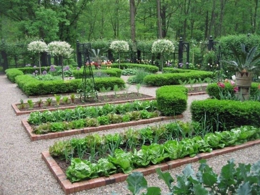 Image of: Edible Garden Design Australia Edible Landscape Garden Design Regarding Edible Landscape Design Good Ideas Edible Landscape Design