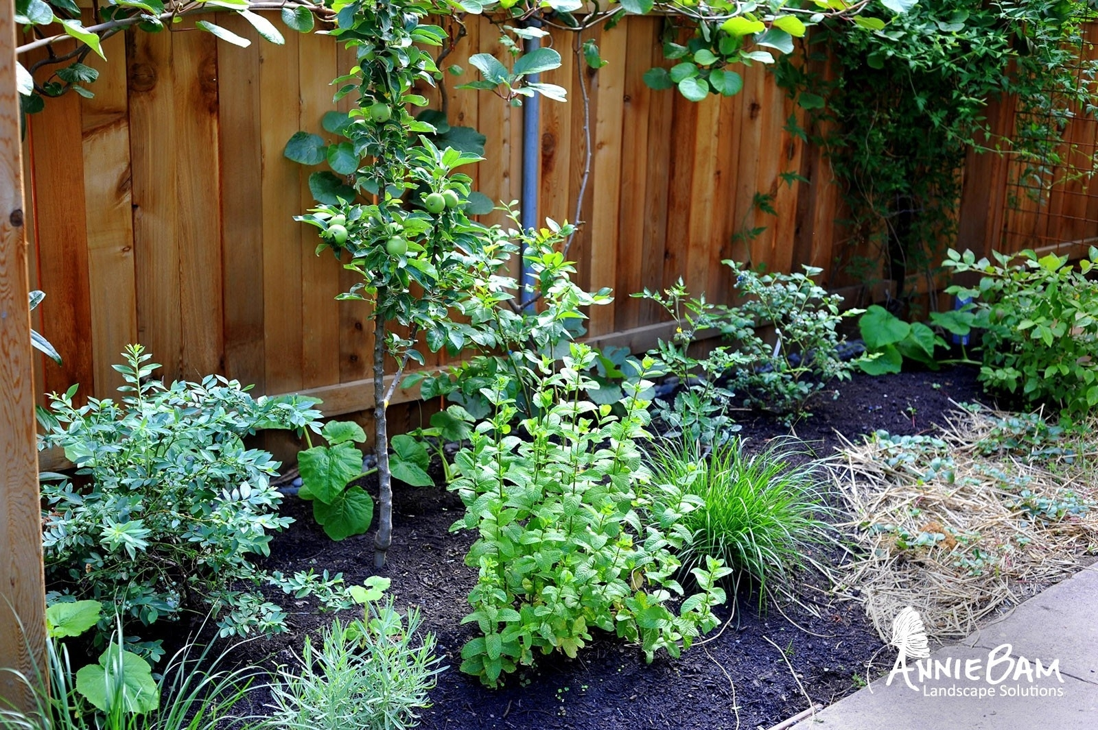 Image of: Edible Gardens Anniebam Inside Edible Landscape Design Good Ideas Edible Landscape Design