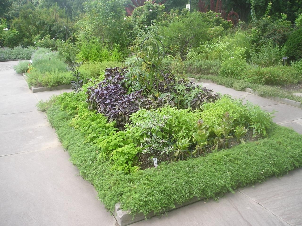 Image of: Edible Landscape Design Hgtv For Edible Landscape Design Good Ideas Edible Landscape Design