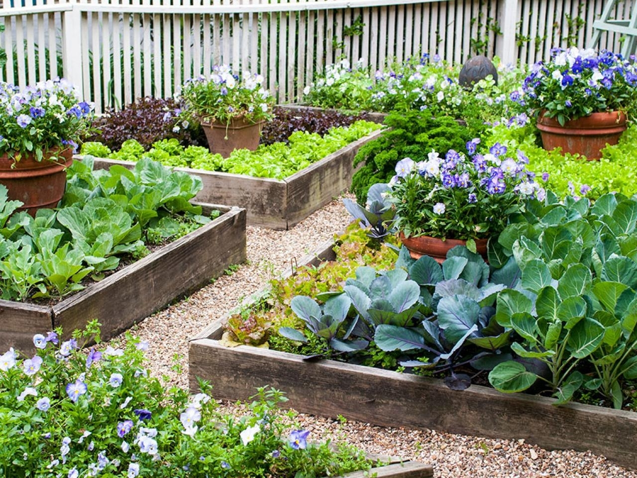 Image of: Edible Landscaping Growing Your Own Food Hgtv Within Edible Landscape Design Good Ideas Edible Landscape Design