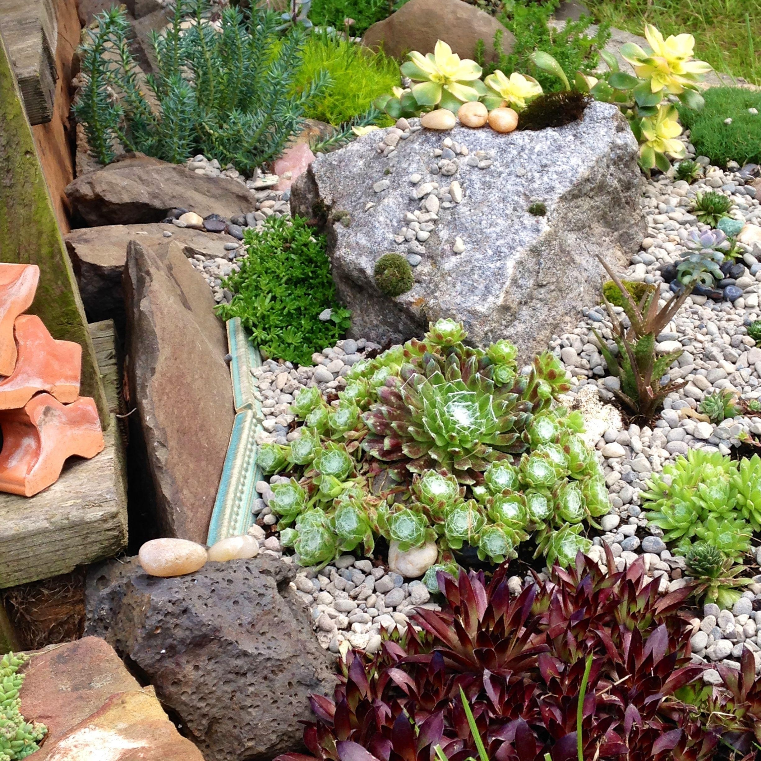 Image of: Exterior Exclusive Rock Garden Ideas And Awesome Backyard Patio In Decorative Rocks For Landscaping Decorative Rocks For Landscaping Ideas