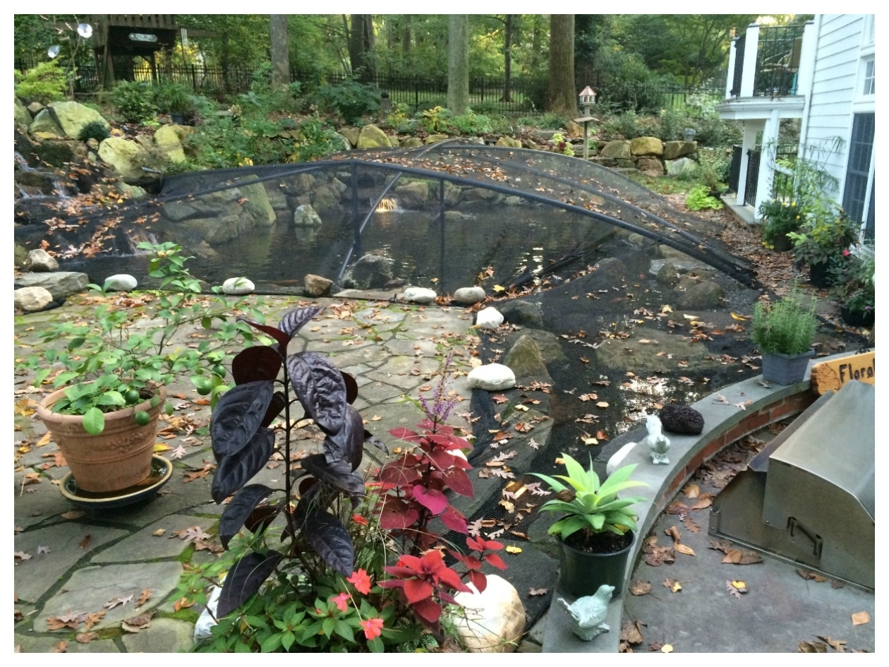 Image of: Fall Pond Maintenance And Pond Netting Turpin Landscaping Inside Landscape Netting Beautiful And Useful Pergola Landscape Netting