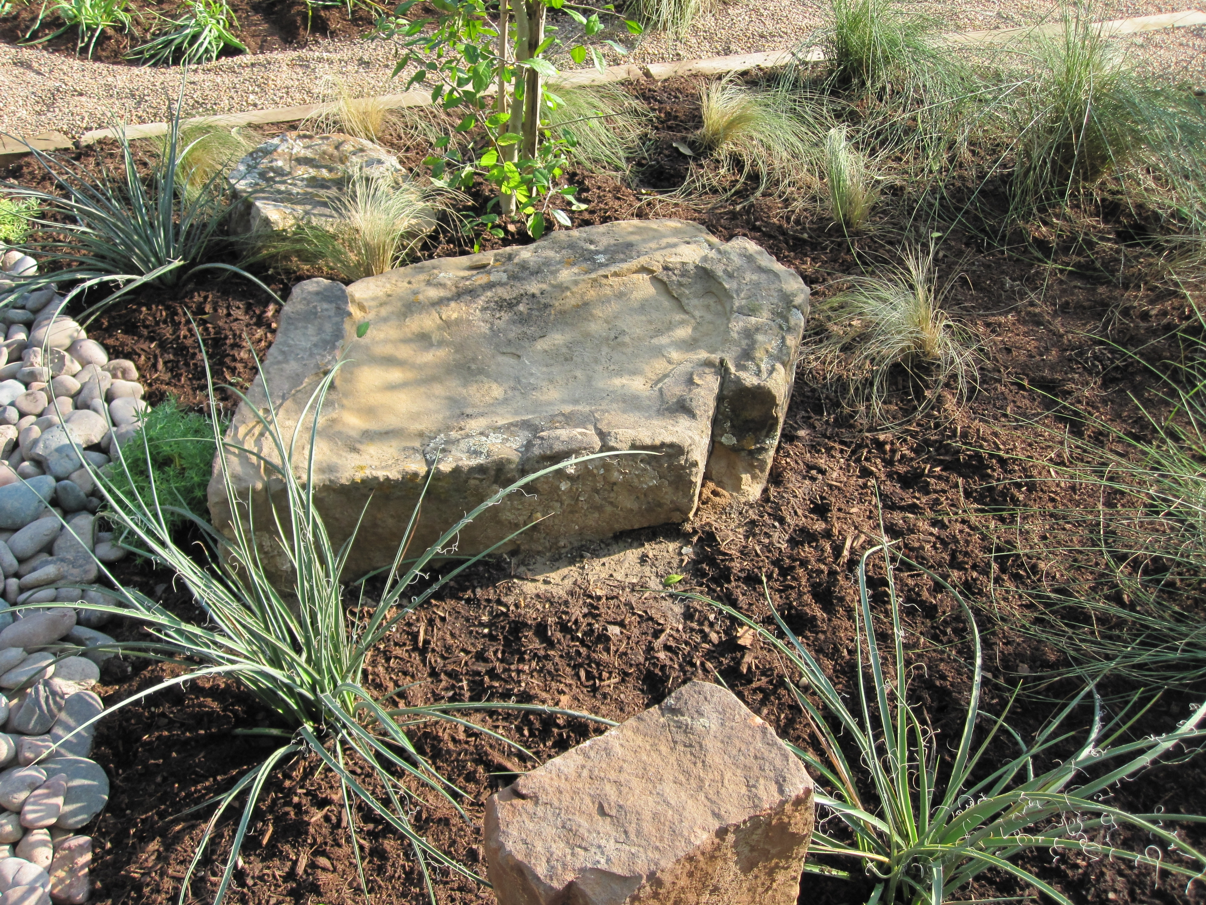 Image of: From Weeds To No Mow Austin Style Garden Part 1 Ravenscourt Regarding Flat Landscaping Rocks Flat Landscaping Rocks Garden