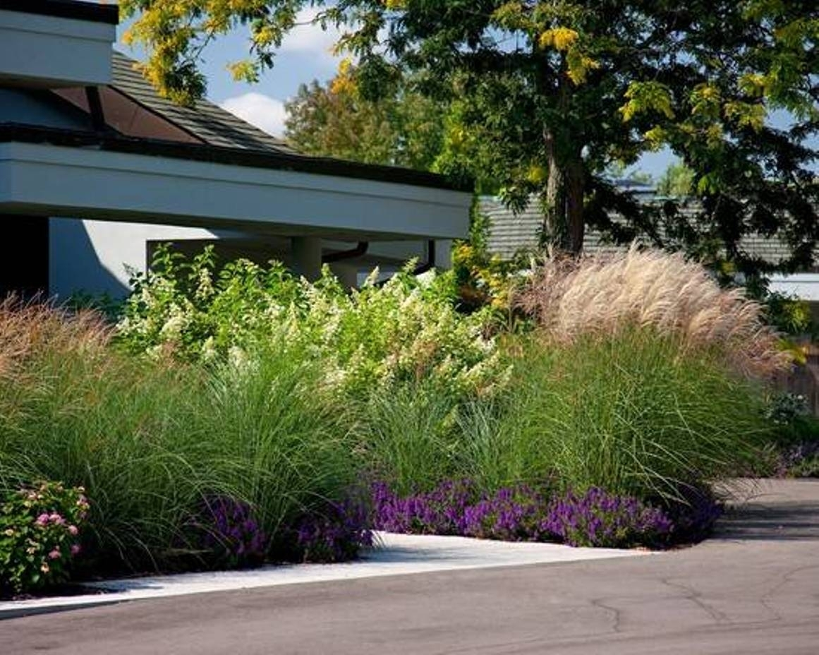 Front Yard House Landscaping With Ornamental Grasses Front Yard With Grasses For Landscaping Special Ideas Grasses For Landscaping