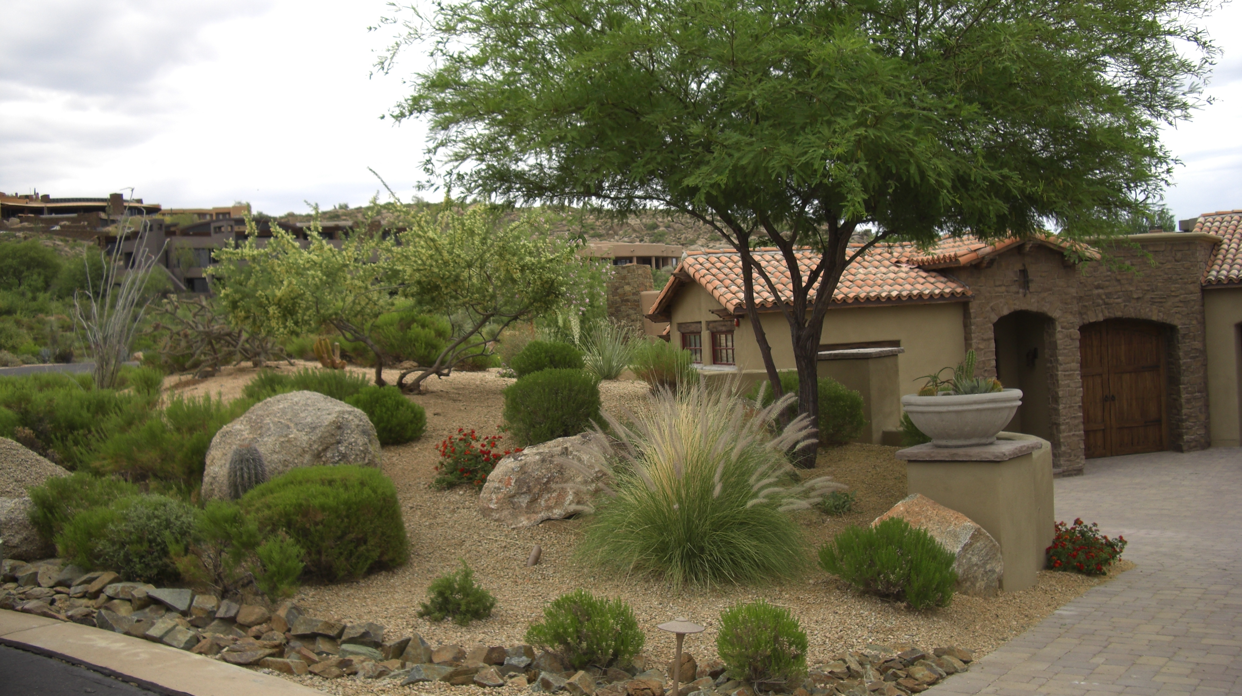 Image of: Garden And Patio Desert Plants For Front Yard Landscaping House Pertaining To Desert Landscaping Plants Ideal Desert Landscaping Plants At Home