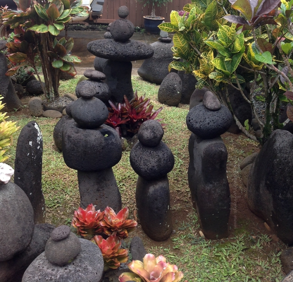 Image of: Garden Chronicles Aloha For Seniors Pertaining To Lava Rocks Landscaping Red Lava Rocks Landscaping