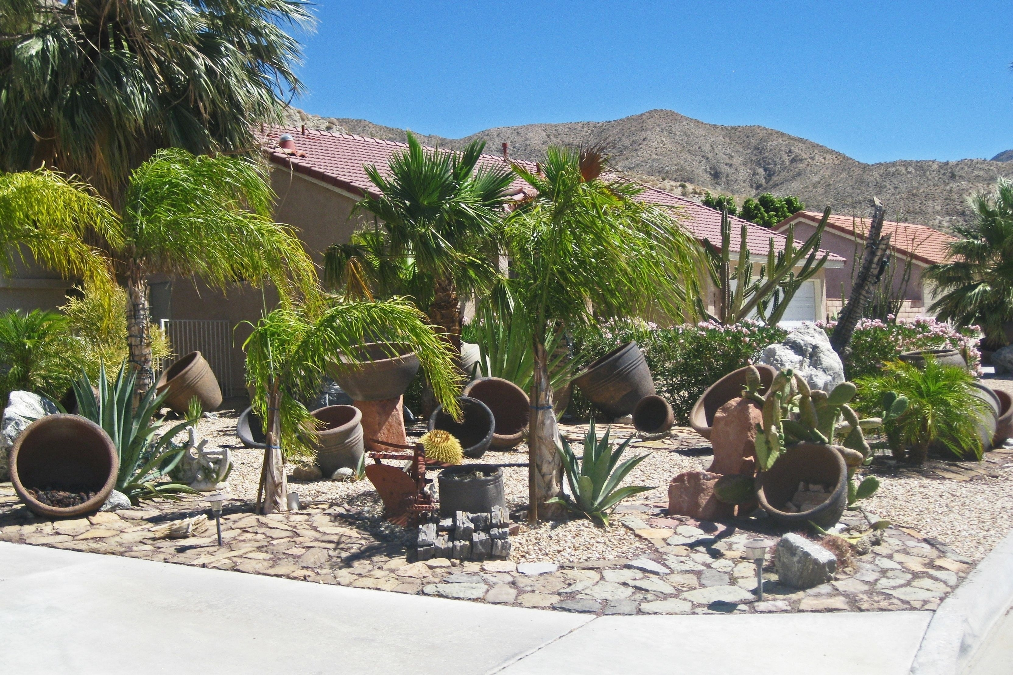Image of: High Desert Landscaping Ideas Ifmore With Regard To Front Yard Desert Landscaping Ideas Attractive Front Yard Desert Landscaping Ideas