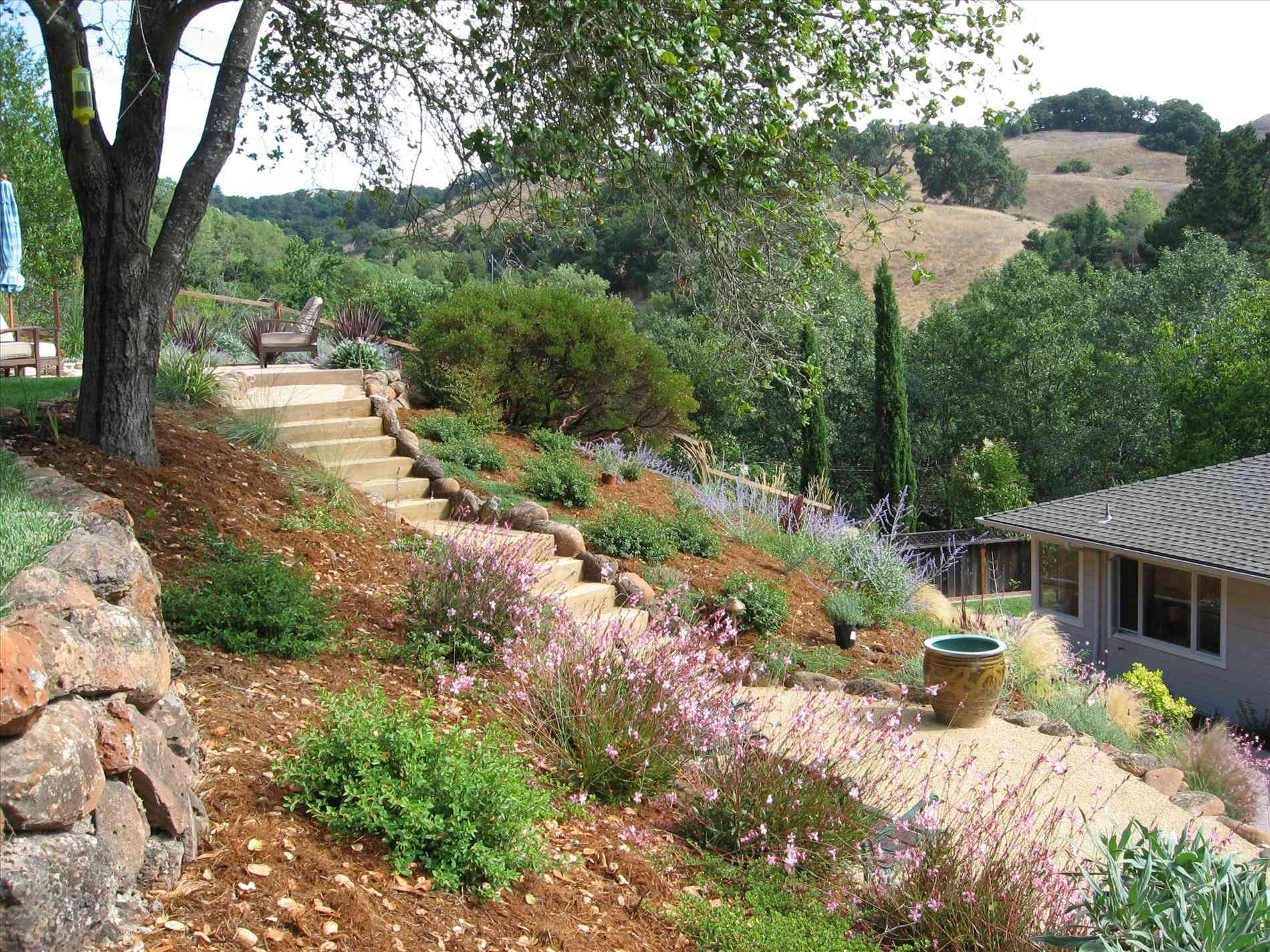 Image of: Hillside Gardening On A Slope Images Pinterest Best Simple Within Hillside Landscape Ideas Creative Hillside Landscape Ideas