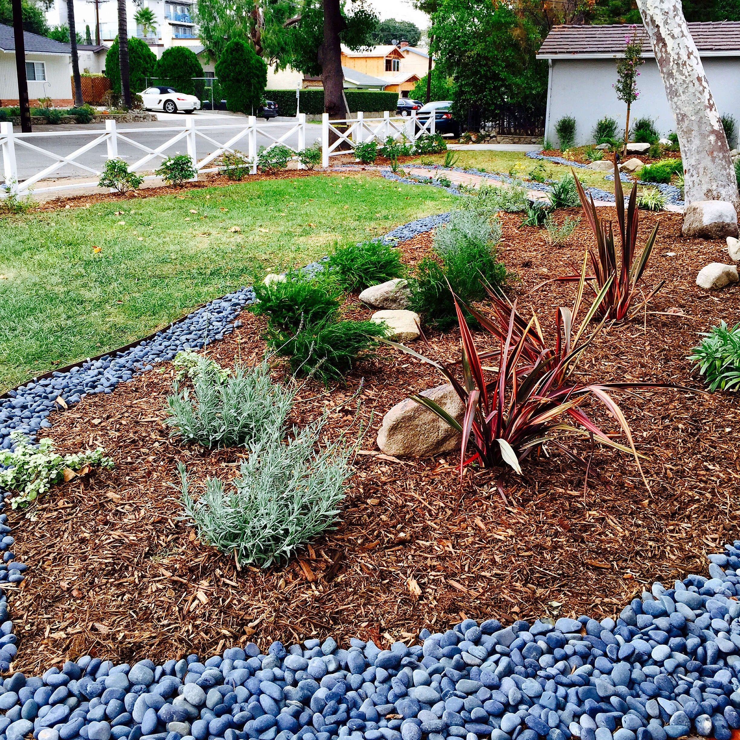 Image of: Hope Gardens Portfolio For Affordable Drought Landscaping