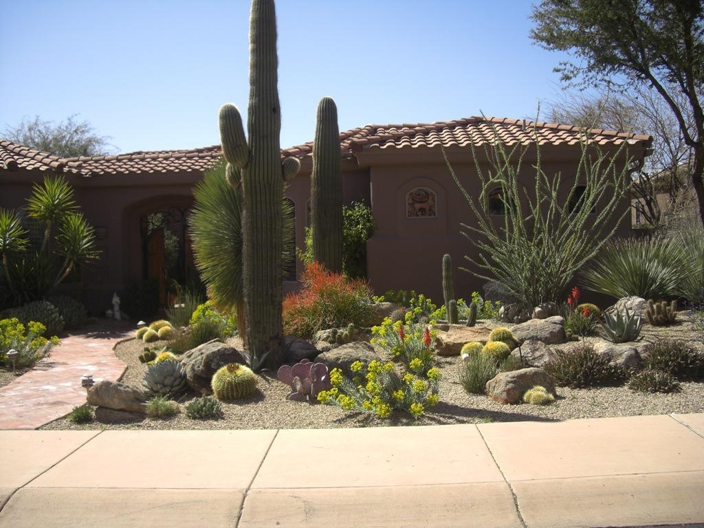Image of: How To Desert Landscaping Plants Theme Designs Ideas And Decor For Desert Landscaping Plants Ideal Desert Landscaping Plants At Home
