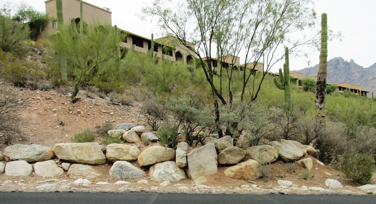 Image of: Xeriscape For Boulders Landscaping Ideas