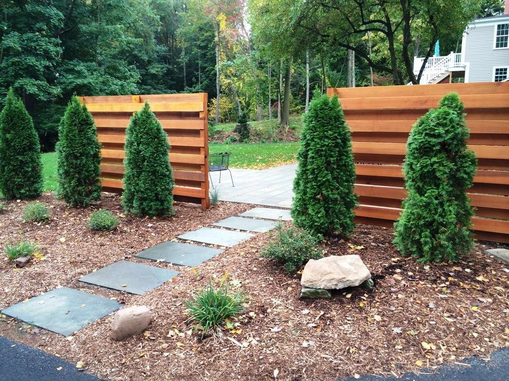 Image of: Plants Diy For Beauty Landscape Stepping Stones