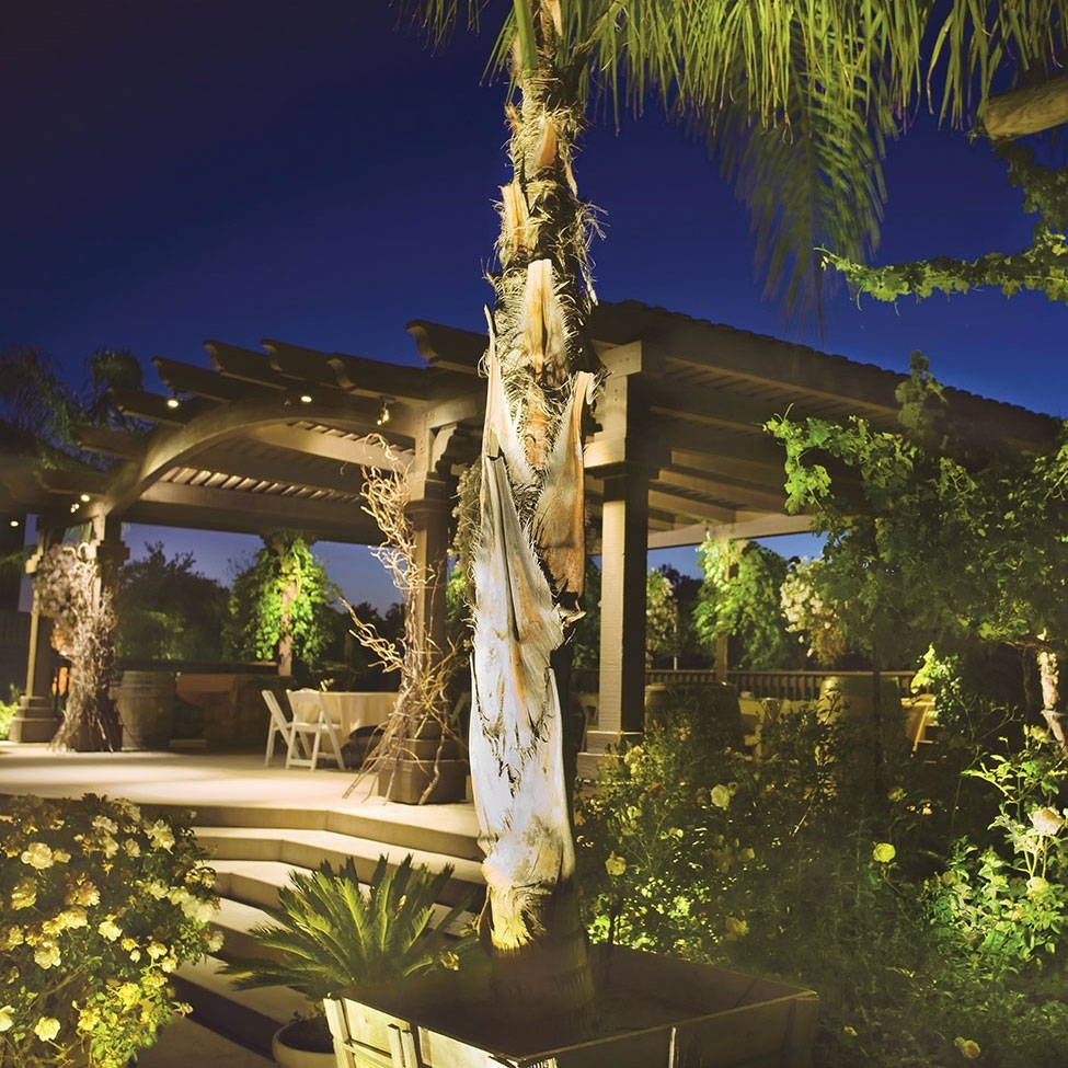 Image of: Landscape Uplights Downlights With Regard To Landscape Uplights Landscape Uplights Year Round