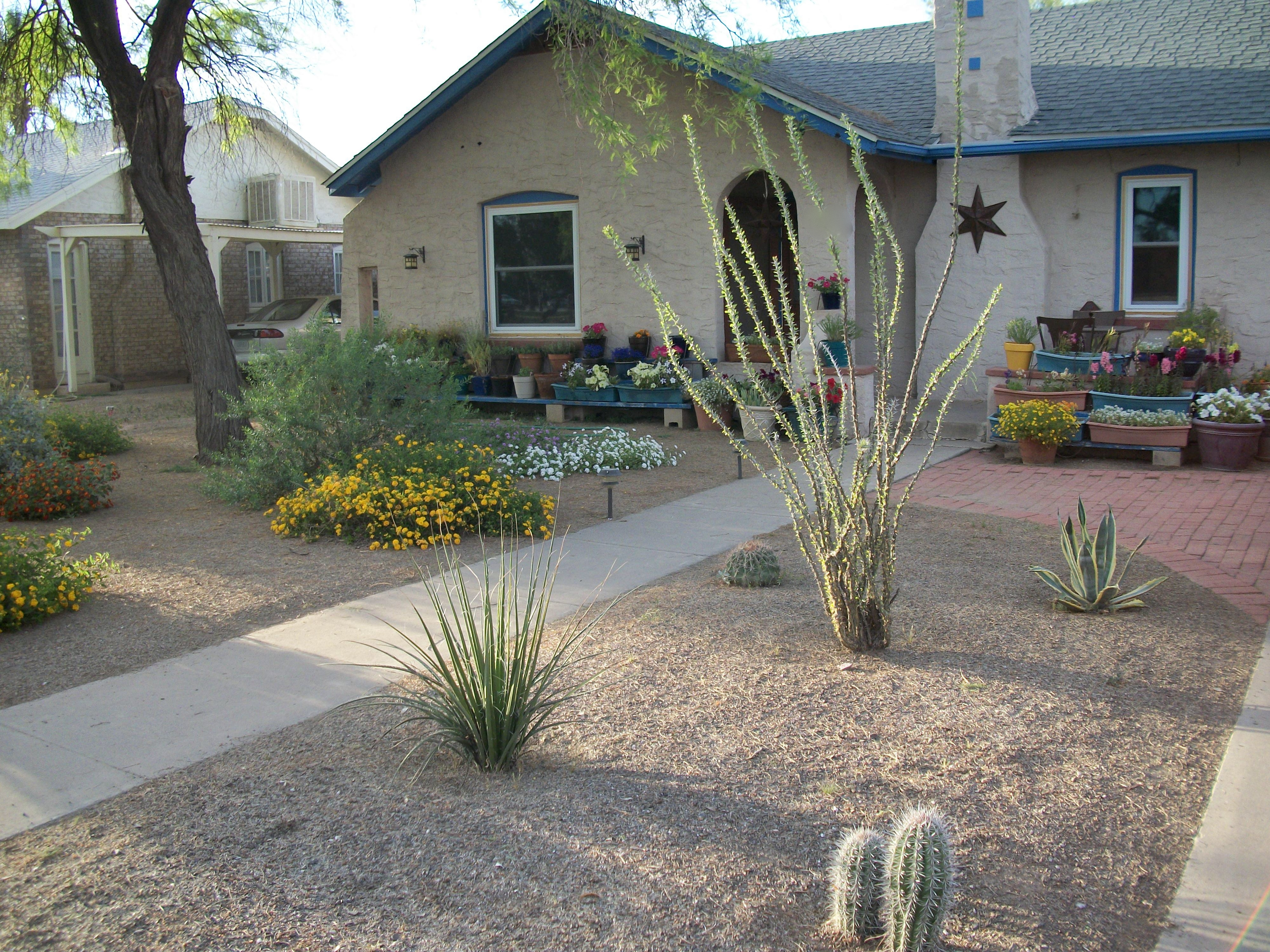Image of: Landscaping Desert Landscaping Ideas For Space Outside Your Home Intended For Front Yard Desert Landscaping Ideas Attractive Front Yard Desert Landscaping Ideas