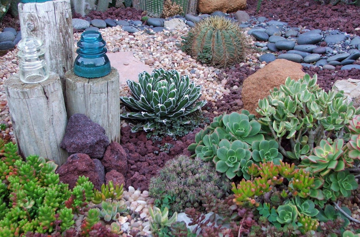 Image of: Landscaping Ideas For A Gorgeous Affordable Drought Landscaping