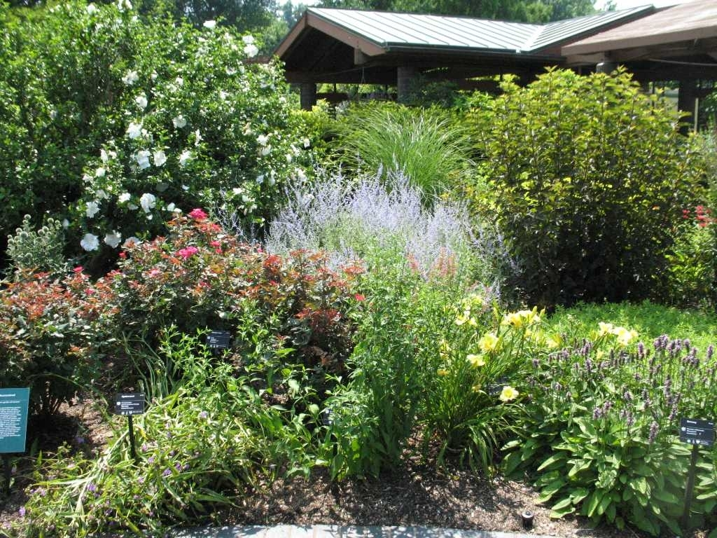 Landscaping Pertaining To Best Landscaping Plants Best Landscaping Plants And Trees