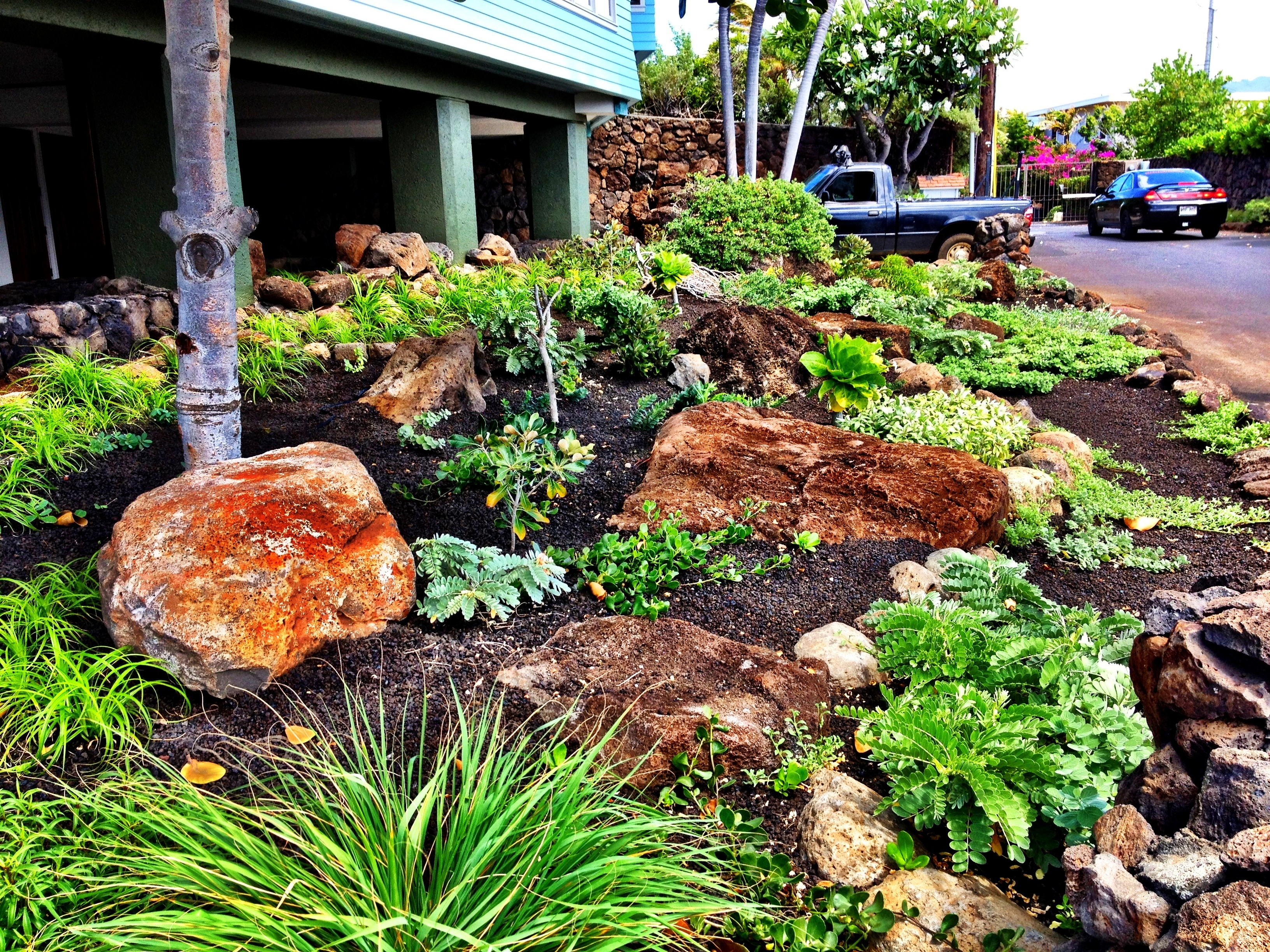 Image of: Landscaping Services With Xeriscape Landscaping Knowing About Xeriscape Landscaping