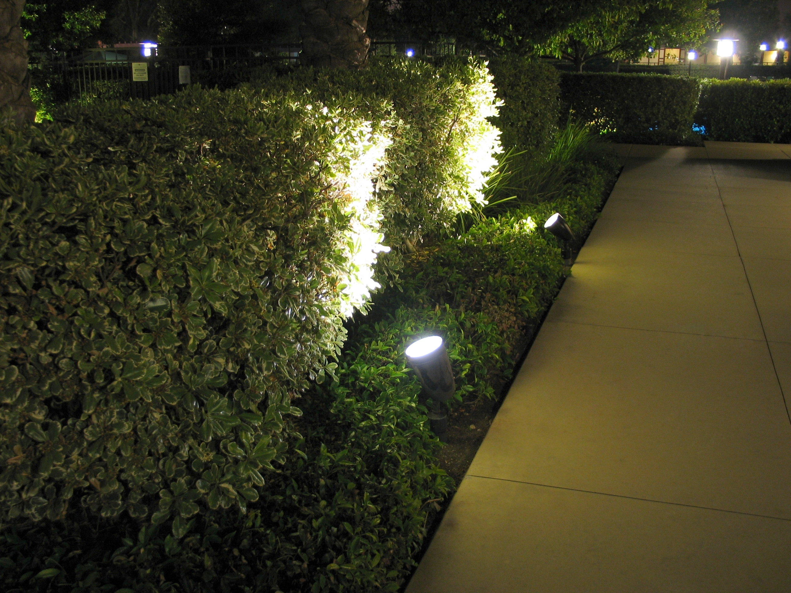 Image of: Ledtronics Led Spotlights Improve Landscape Lighting Efficiency In For Landscape Spotlights Wonderful Landscape Spotlights At Night
