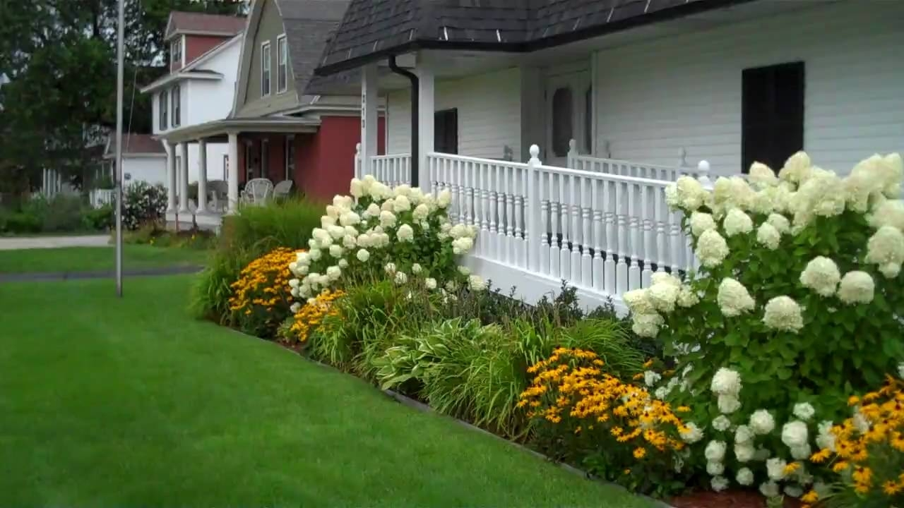 Image of: Limelight Hydrangea In The Landscape Youtube Regarding Landscaping With Hydrangeas Landscaping With Hydrangeas Ideas
