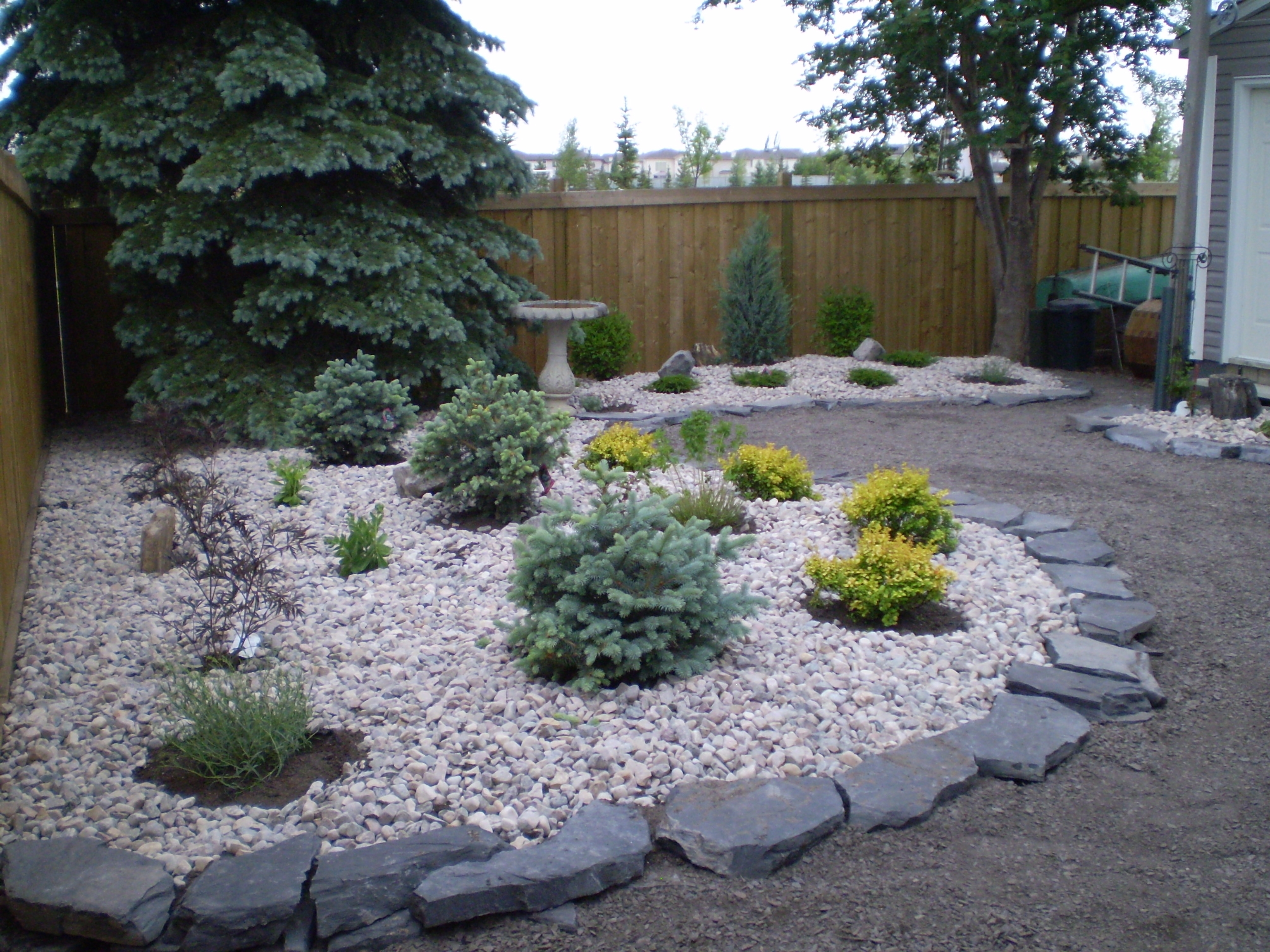 Image of: Low Maintenance Landscaping Xeriscaping Low Maintenance In White Rocks For Landscaping Amazing White Rocks For Landscaping