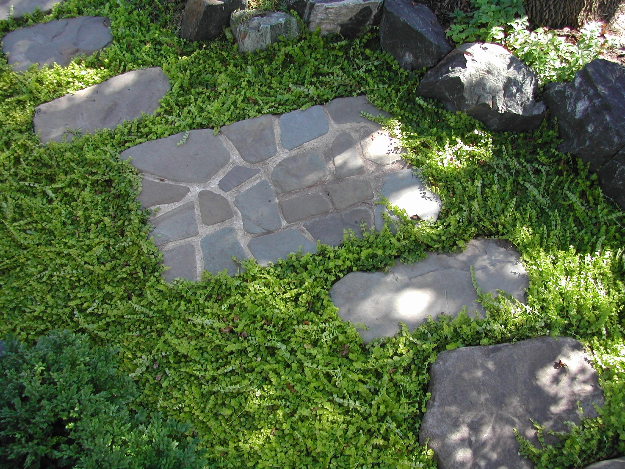 Minnesota Landscape Design With Beauty Landscape Stepping Stones