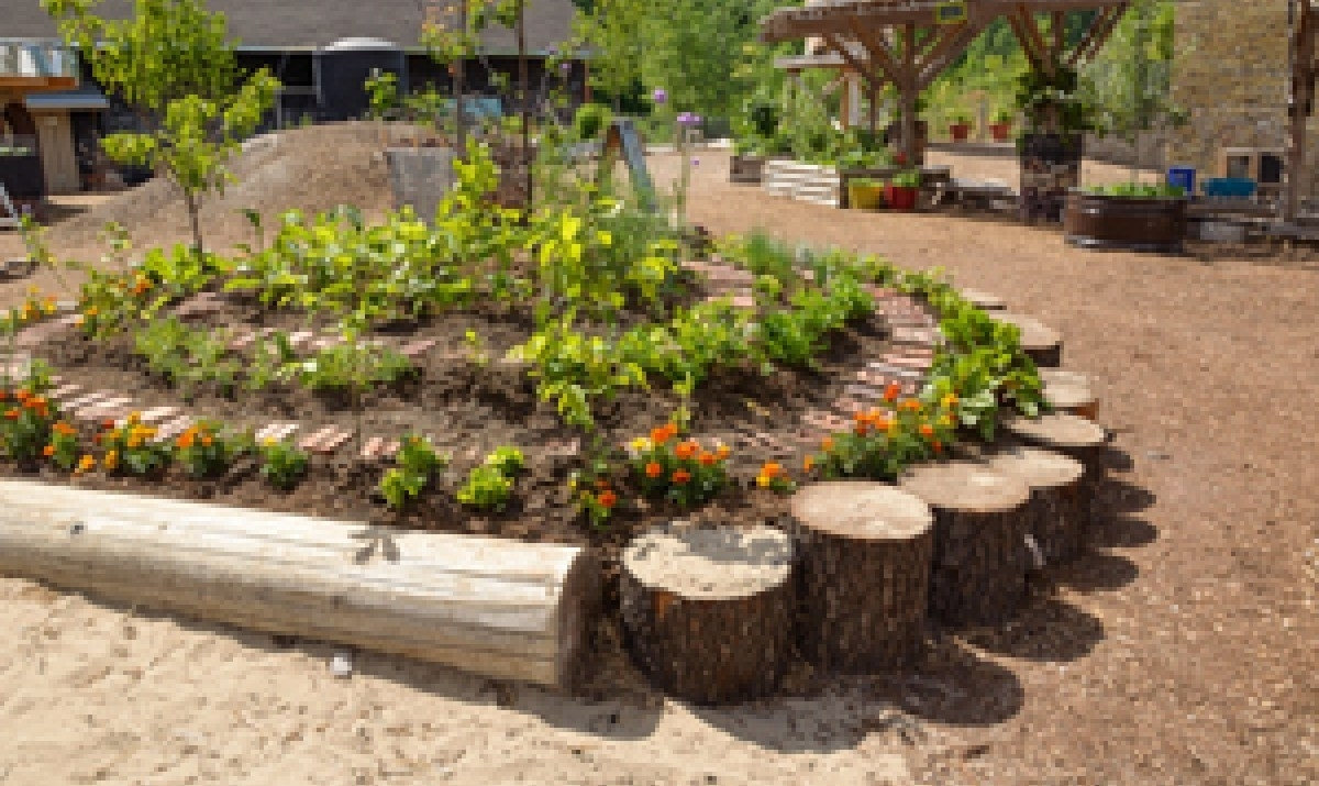 Image of: Nice Landscaping Logs Landscape Timber Flower Beds Newsonairorg For Landscaping Logs Landscaping Logs Beautiful In The Garden