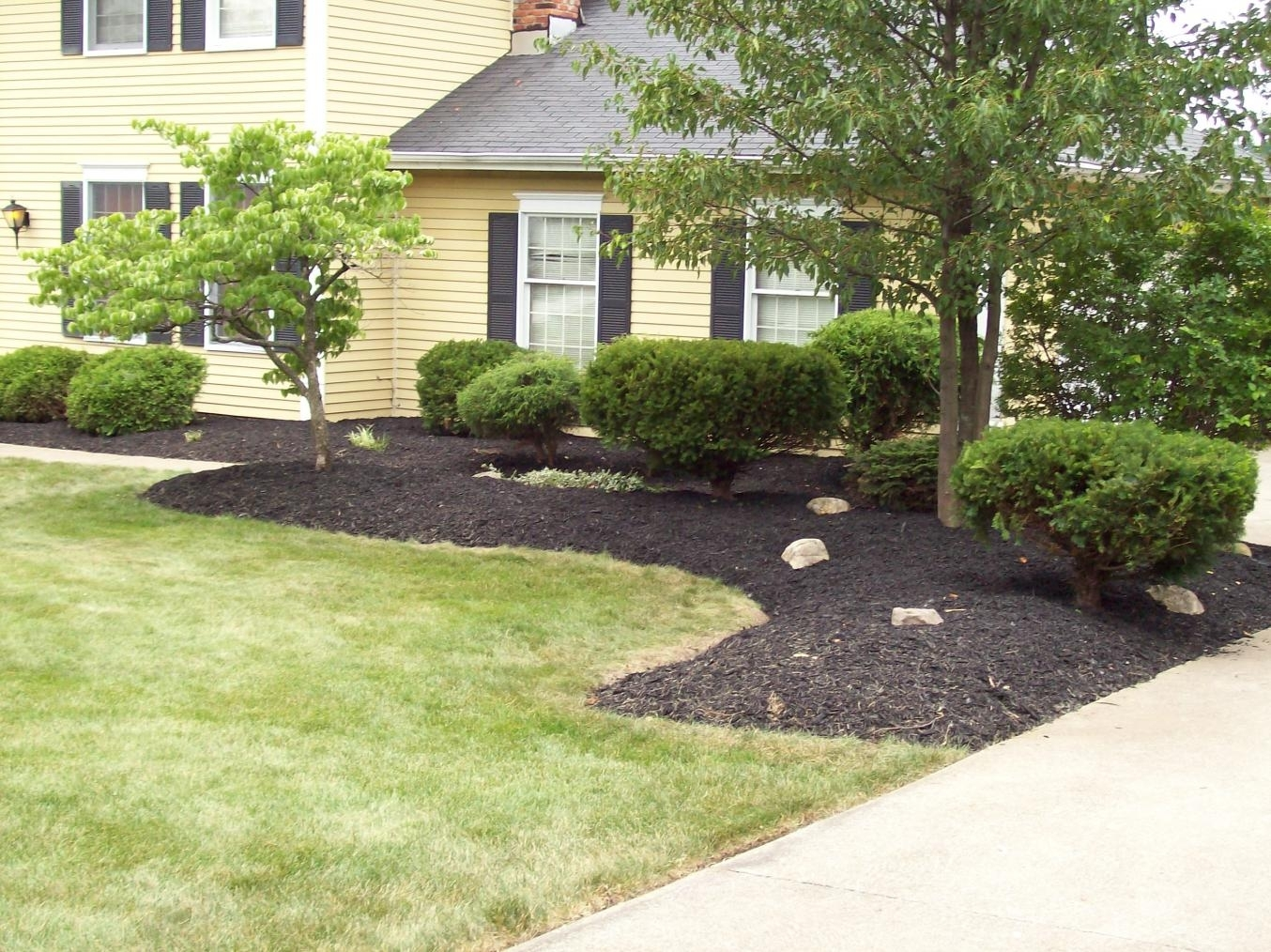 Image of: Outdoor Garden Exciting Front Yard Landscaping Ideas With Green Pertaining To Front Yard Landscaping Ideas Appealing Front Yard Landscaping Ideas