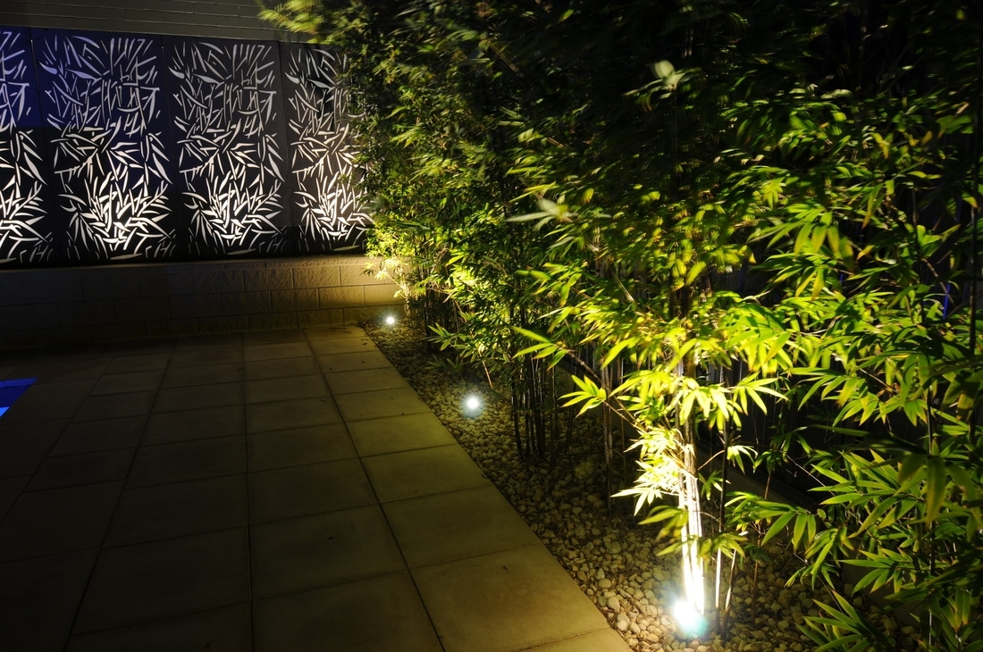 Image of: Outdoor Lighting Design Ideas Led Outdoor Bring Your Garden Inside Landscape Spotlights Wonderful Landscape Spotlights At Night