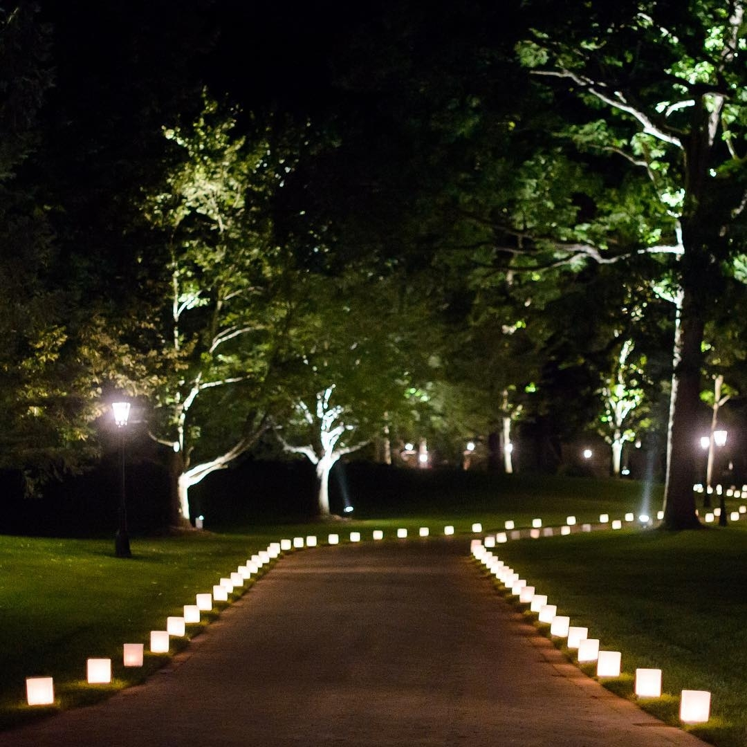 Image of: Outdoor Tree Lights Home Design Ideas And Pictures In Outdoor Lighting Designs Outdoor Lighting Designs In Facades
