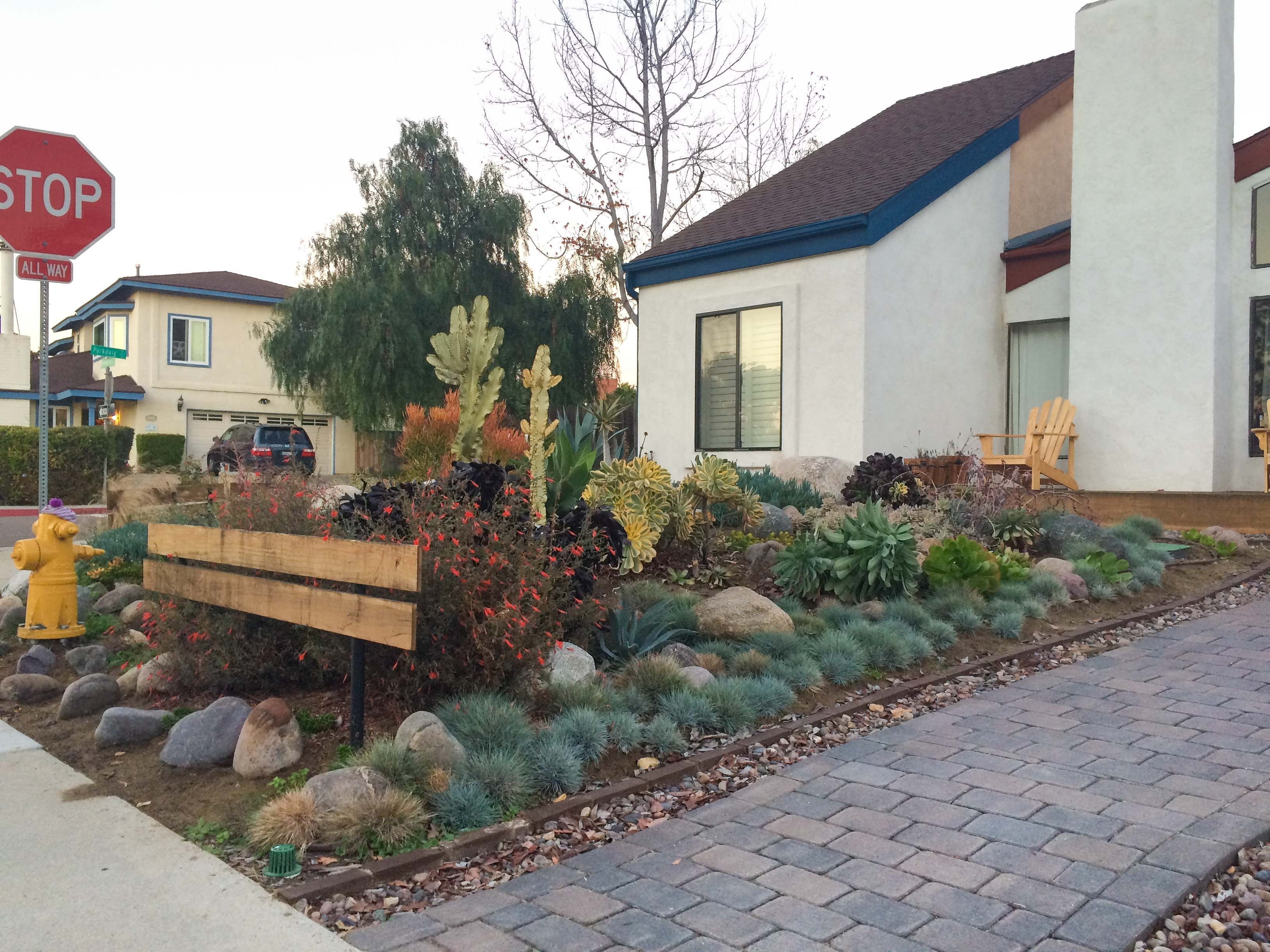Image of: Patio Outdoor Considering Affordable Drought Landscaping