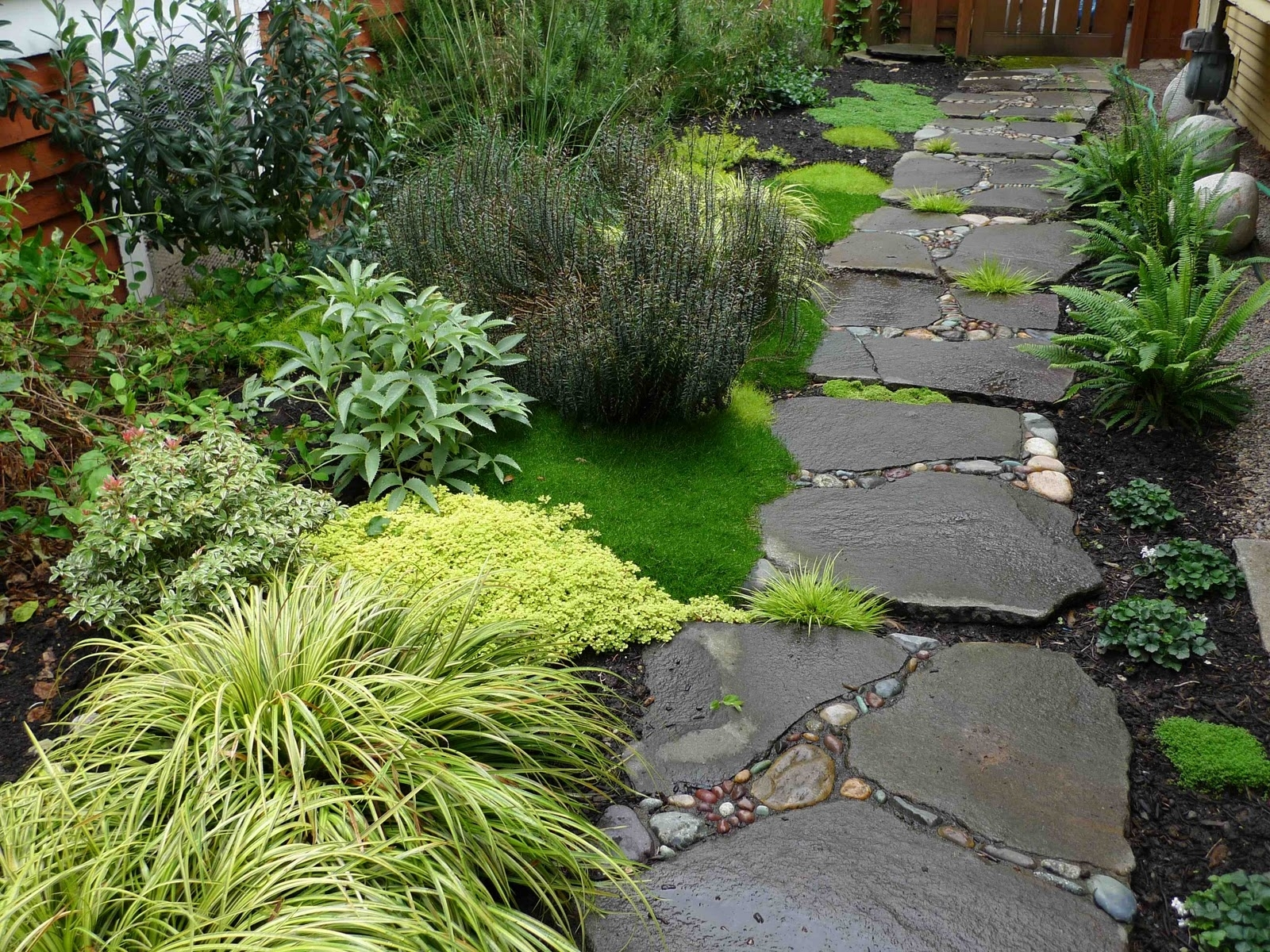 Image of: Pavers For Backyard Beauty Landscape Stepping Stones