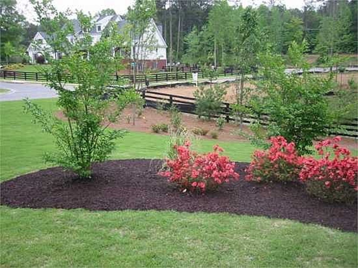 Image of: Photo Gallery Mulch2you Coloured Garden Mulch Niagara Region For Landscape Berm Best Design Landscape Berm