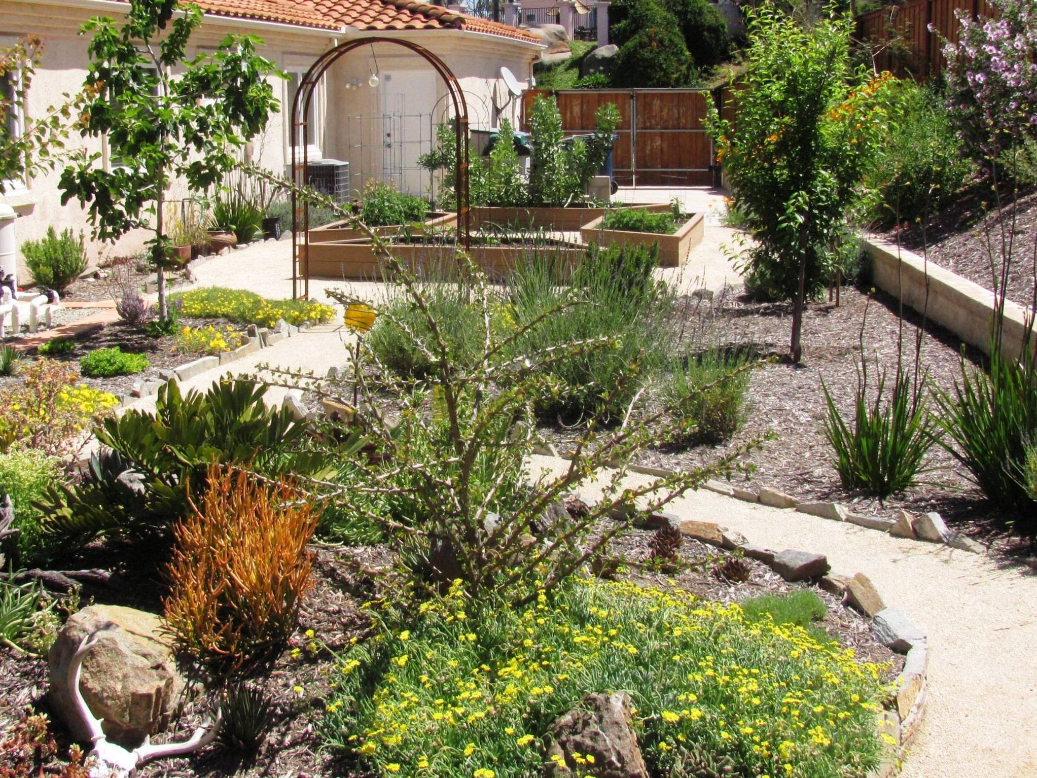 Image of: Portfolio Regarding Xeriscape Landscaping Knowing About Xeriscape Landscaping