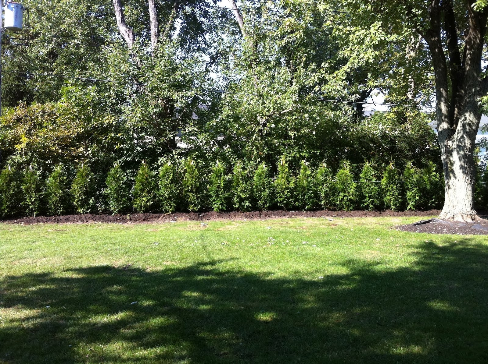 Image of: Privacy Wall Greenknight Landscaping Pertaining To Landscape Berm Best Design Landscape Berm