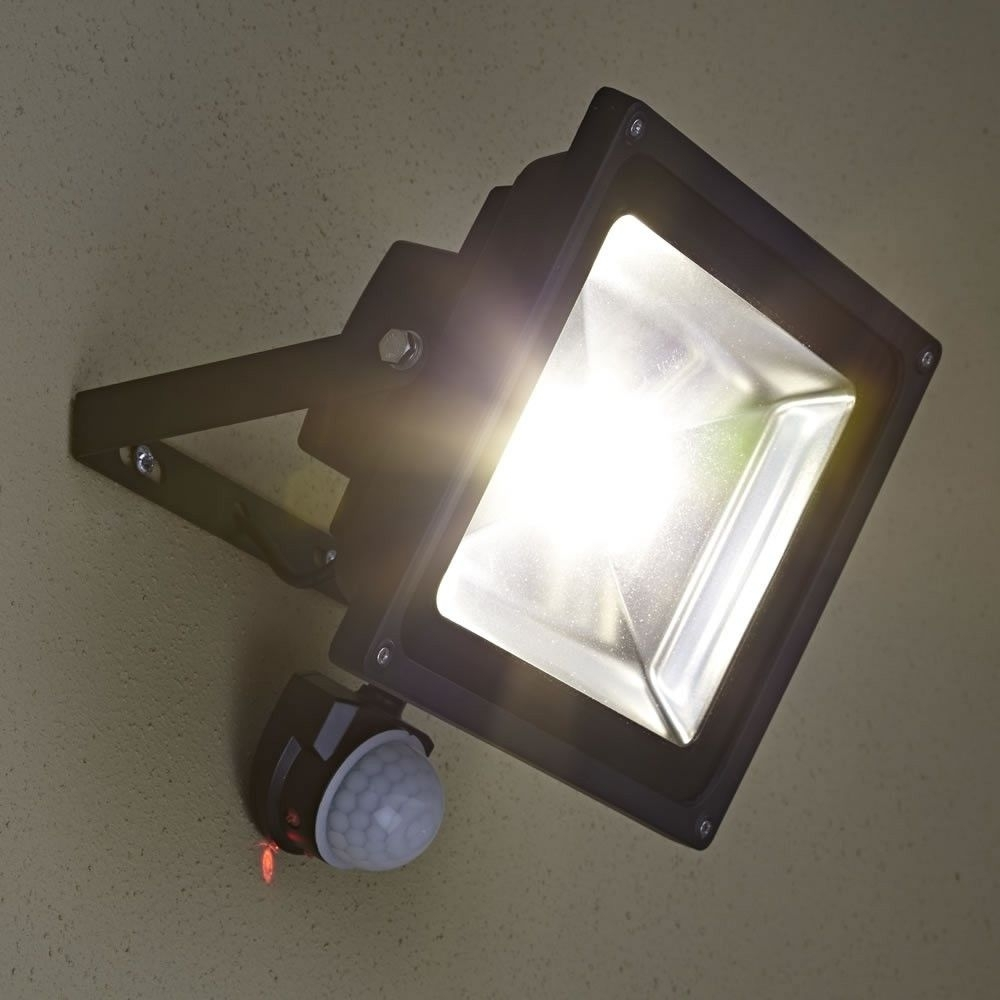 Image of: Professional 50w Led Floodlight With Anti Creep Pir Motion Sensor Regarding Outdoor Led Flood Light Fixture Outdoor Led Flood Light Fixture Design