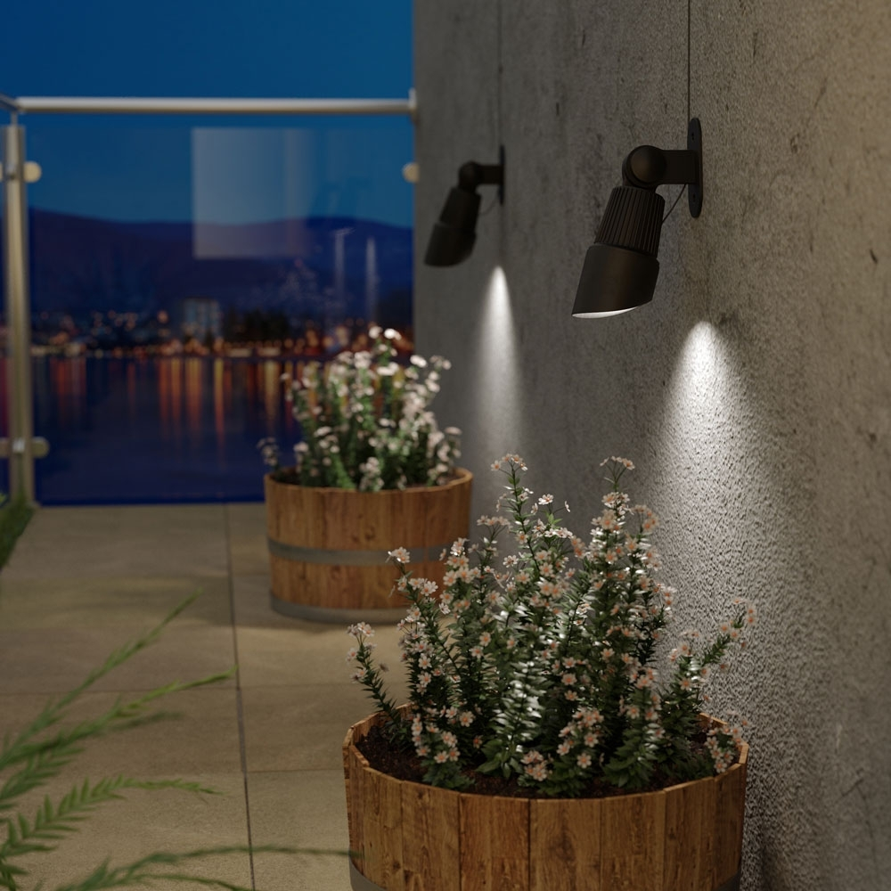 Image of: Selene Solar Landscape Spotlights Set Of 2 Inside Landscape Spotlights Wonderful Landscape Spotlights At Night