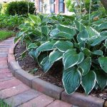 Simple Landscape Border Ideas Beautiful House Design In Bricks For Landscaping Edge Bricks For Landscaping Ideas