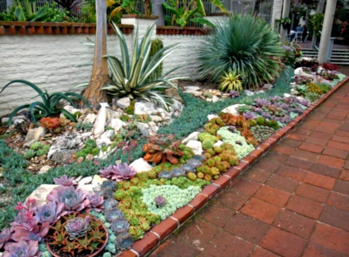 Image of: Succulent Landscaping Throughout Cactus Landscaping