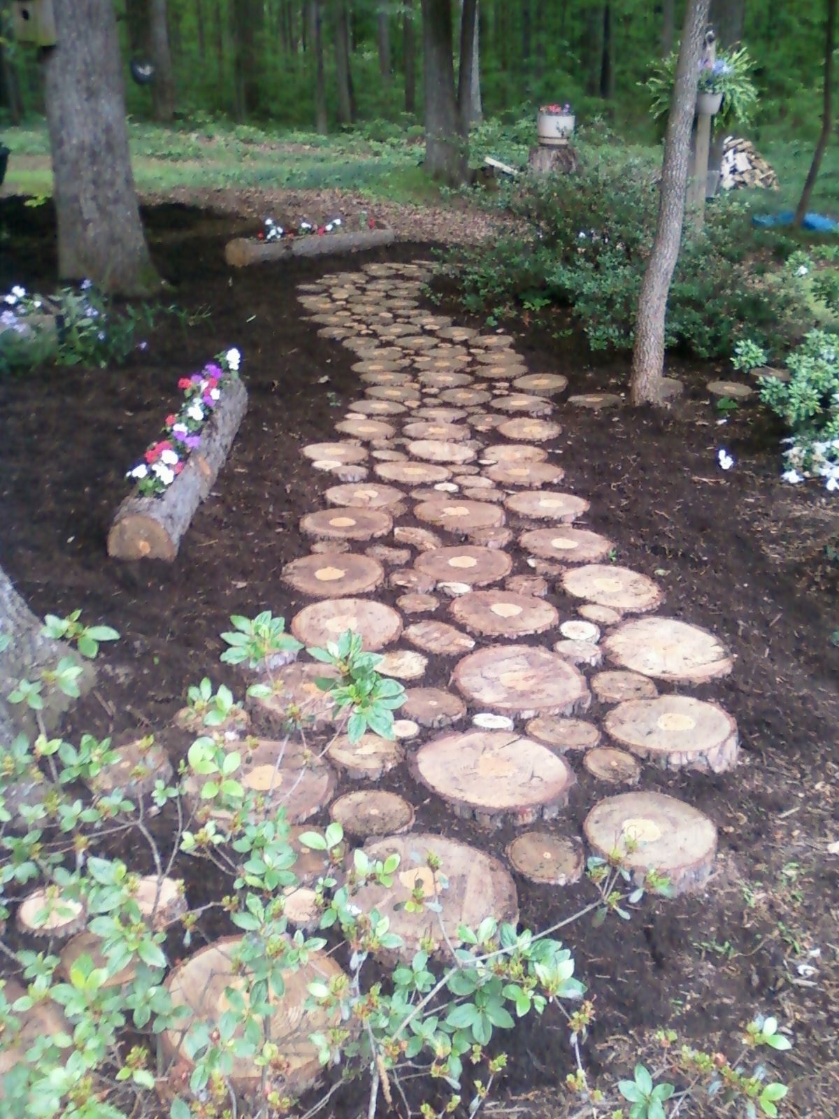 Image of: Used A Pine Tree For The Walk Cut Thick Slices What Was Left In Landscaping Logs Landscaping Logs Beautiful In The Garden