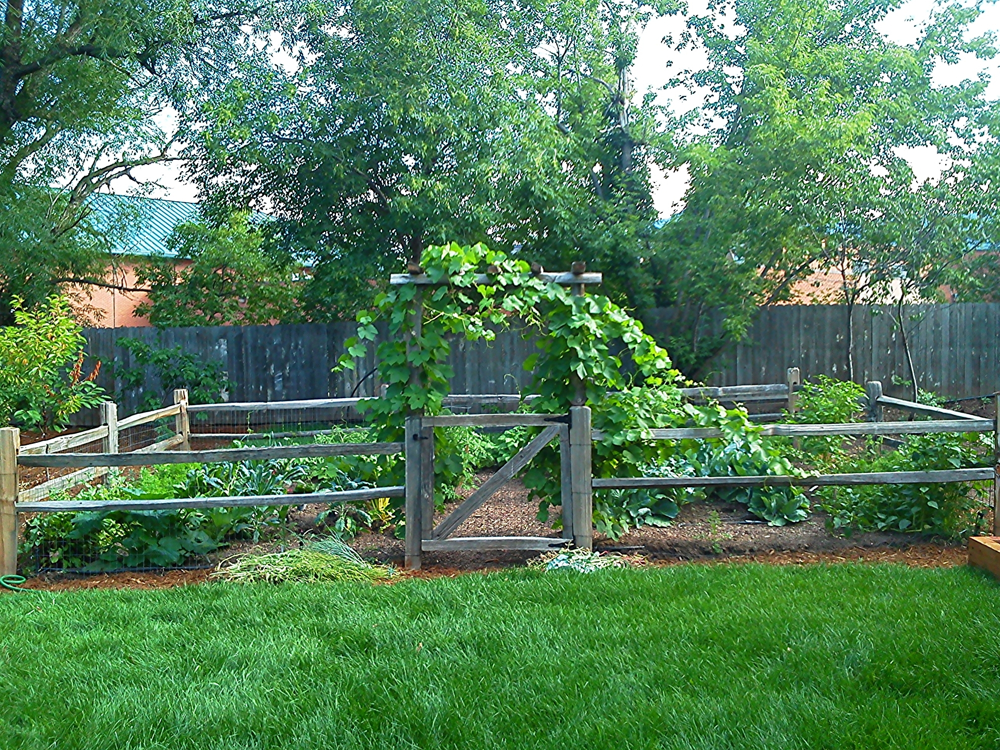 Image of: Veggiescapes Providing Veggiescapes Edible Landscape Services For Edible Landscape Design Good Ideas Edible Landscape Design