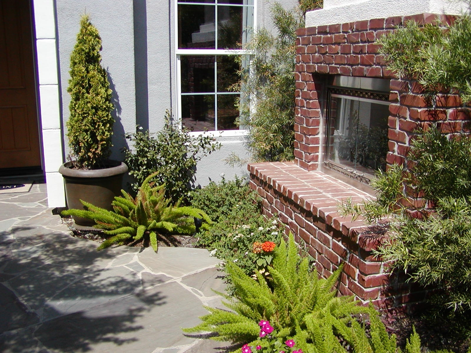 Image of: Why Go Drought Tolerant Sacramento Landscape For Drought Tolerant Landscape Ideas Popular Drought Tolerant Landscape Ideas