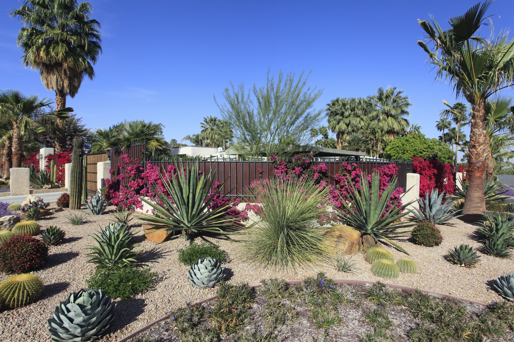 Image of: Xeriscape Blue Marble Landscape In Xeriscape Landscaping Knowing About Xeriscape Landscaping
