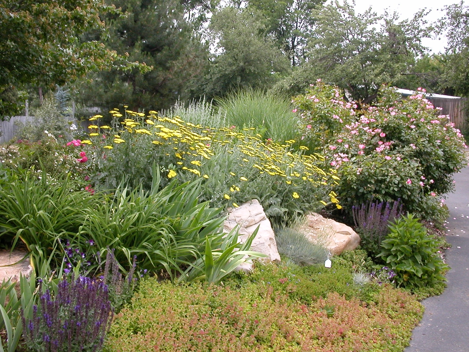 Image of: Xeriscape Introduction Pertaining To Xeriscape Landscaping Knowing About Xeriscape Landscaping