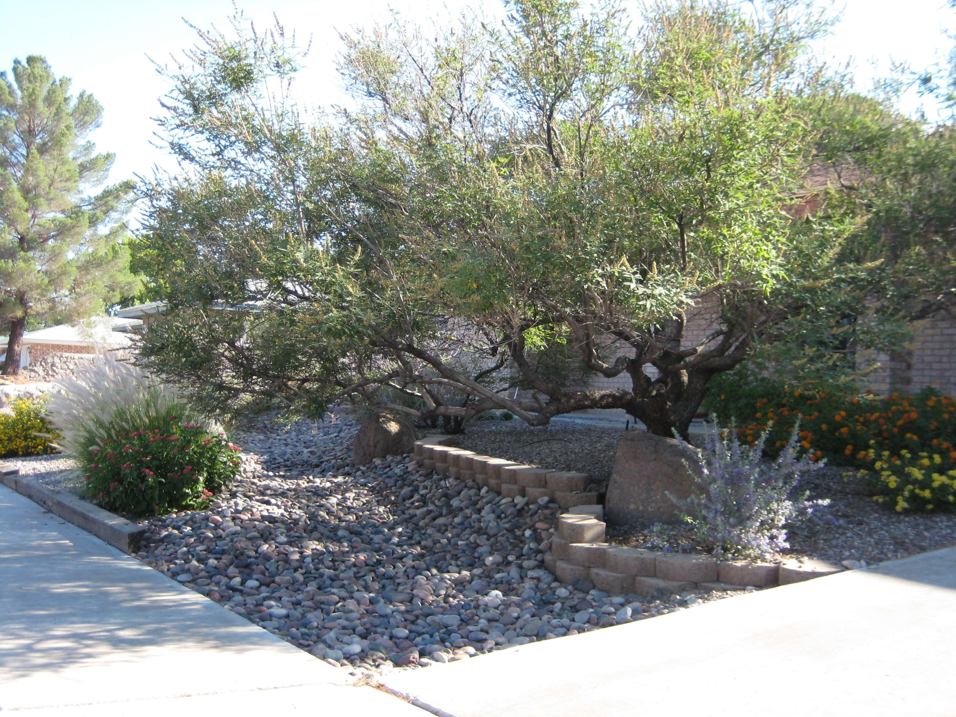 Image of: Xeriscaping Extension Master Gardener Inside Xeriscape Landscaping Knowing About Xeriscape Landscaping
