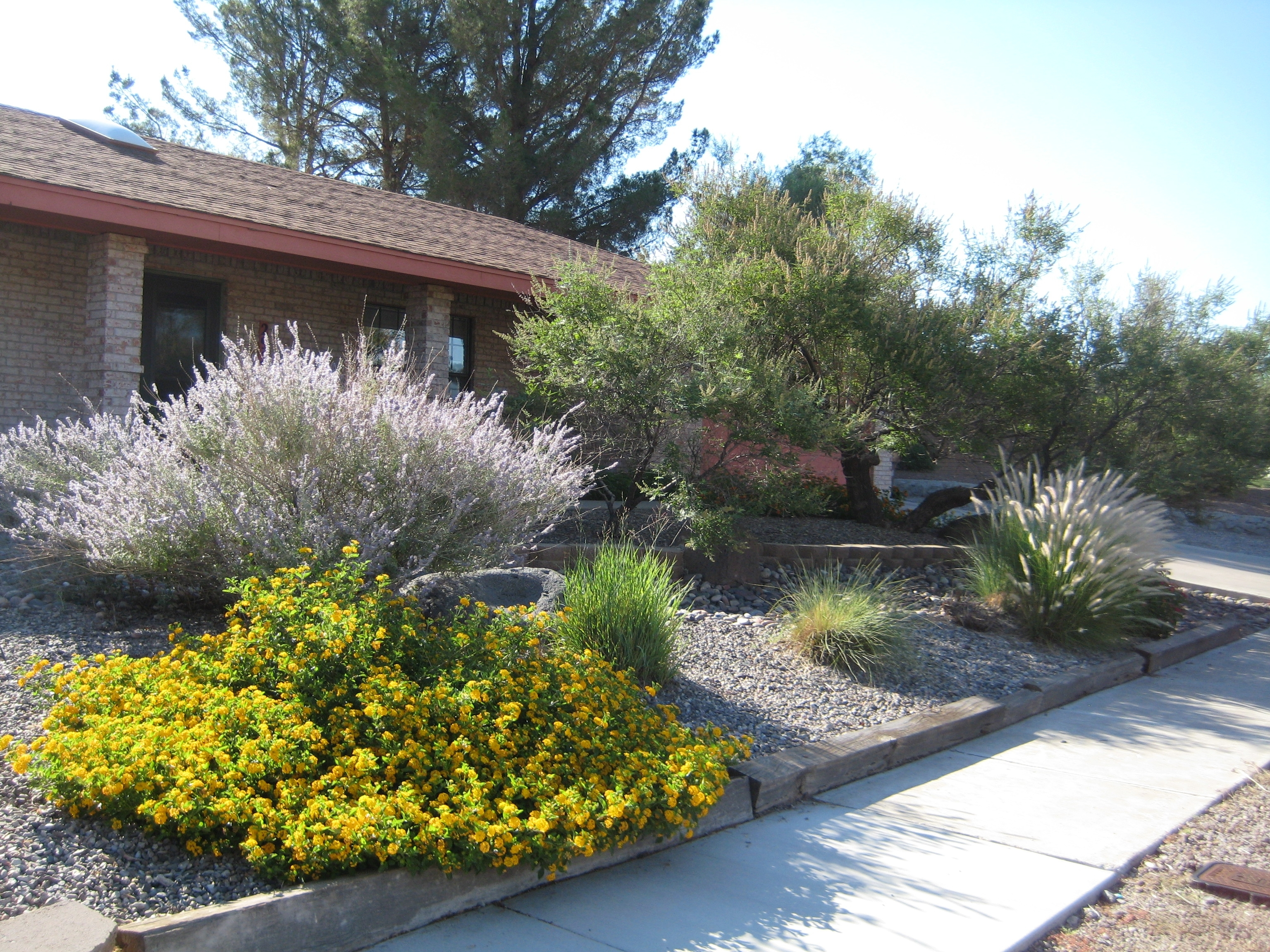 Image of: Xeriscaping Extension Master Gardener Within Xeriscape Landscaping Knowing About Xeriscape Landscaping