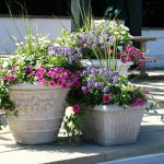 Flower Pot Ideas For Nice Front Porch Flowers
