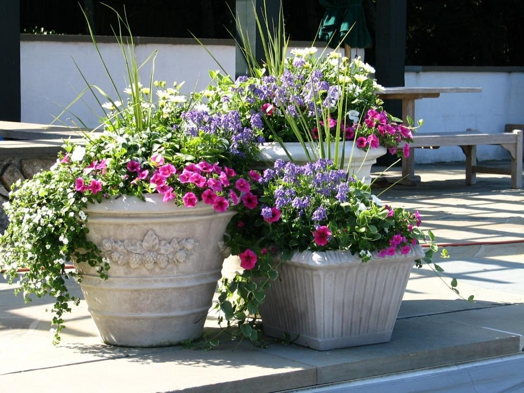 Image of: Flower Pot Ideas For Nice Front Porch Flowers
